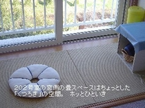 (新)202室畳スペース.JPG