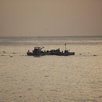 *定置網漁の風景