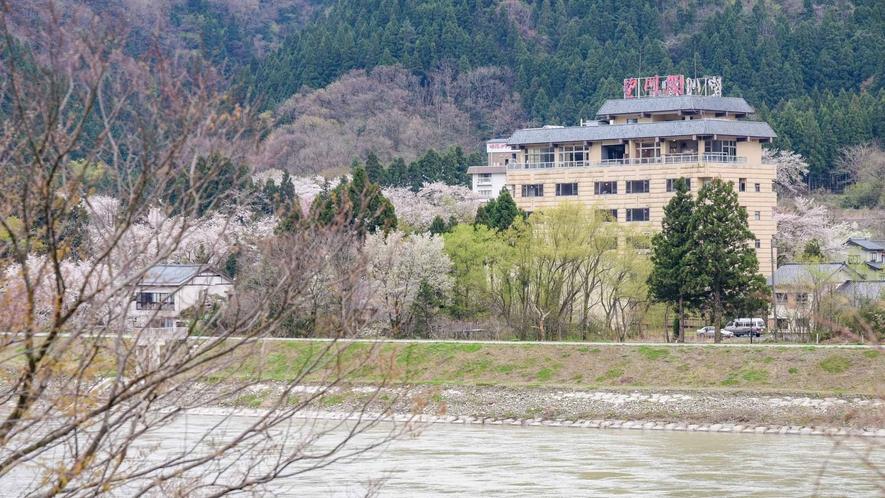 *【外観/春】咲花で楽しむ、桜の季節。展望露天からの情緒的な景観をお楽しみください。