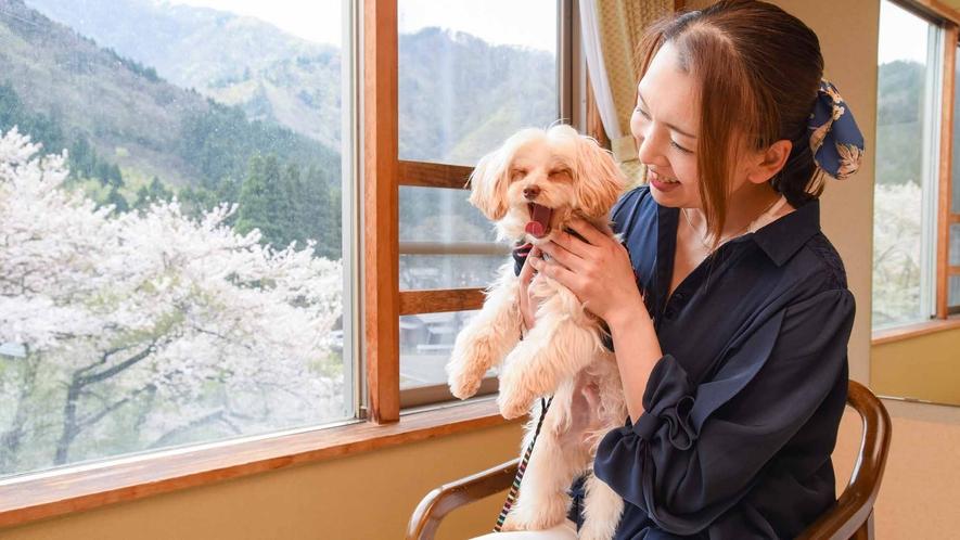 *【客室/わんちゃん同伴】小型犬~大型犬までご宿泊OK!愛犬と一緒に楽しい休日をお過ごしください