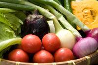 地産の野菜