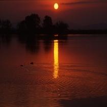 夕日が沈むびわ湖