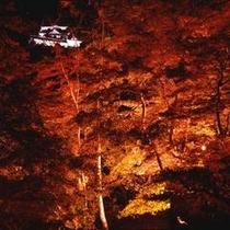 紅葉ライトアップと彦根城天守閣