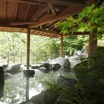 深緑の露天風呂さるあみの湯