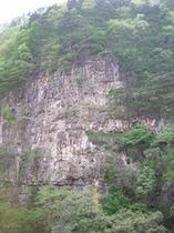 新緑の片倉山