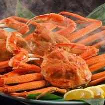 北海道産 ずわい蟹