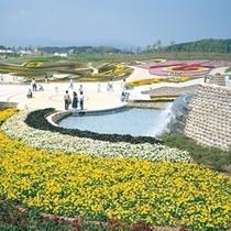 【観光スポット】国営みちのく杜の湖畔公園 写真提供:宮城県観光課
