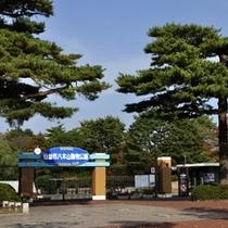 八木山動物公園(緑水亭よりお車で約40分) 写真提供:宮城県観光課