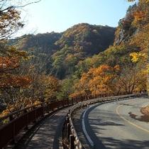 【吾妻渓谷】当館より車で50分。景勝地の八丁暗がり付近を吾妻峡と呼び、国の名勝に指定されています。