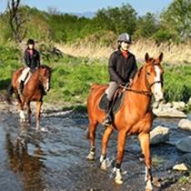 【赤城乗馬クラブ】当館より車で25分。利根川の河原をのんびりと行く外乗りが人気です。