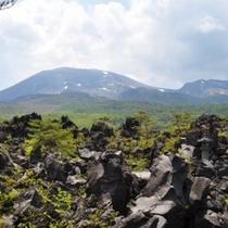 【鬼押出し園】当館より車で80分。1783年の浅間山の噴火の際に流れ出た溶岩で形成されています。