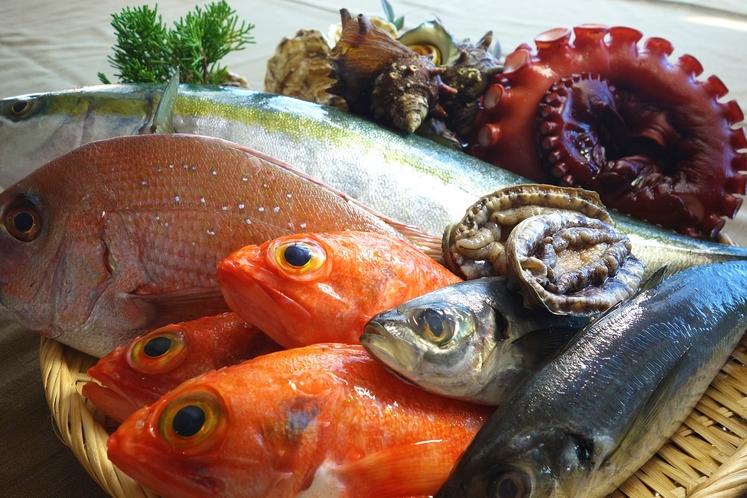 茨城の魚介類