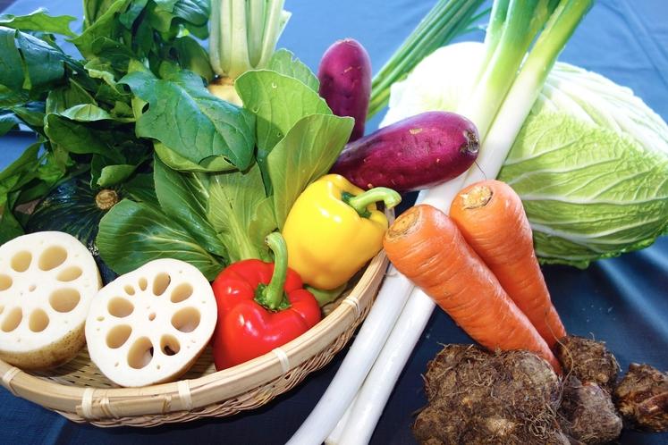茨城の野菜