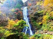 丸神の滝(紅葉)