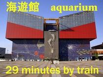 海遊館aquarium 電車約29分
