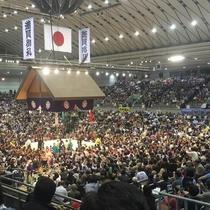 3月の大阪相撲場所