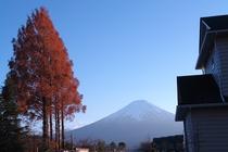 YUSHINと富士山
