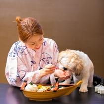 【お食事処】わんちゃんと一緒にお食事♪