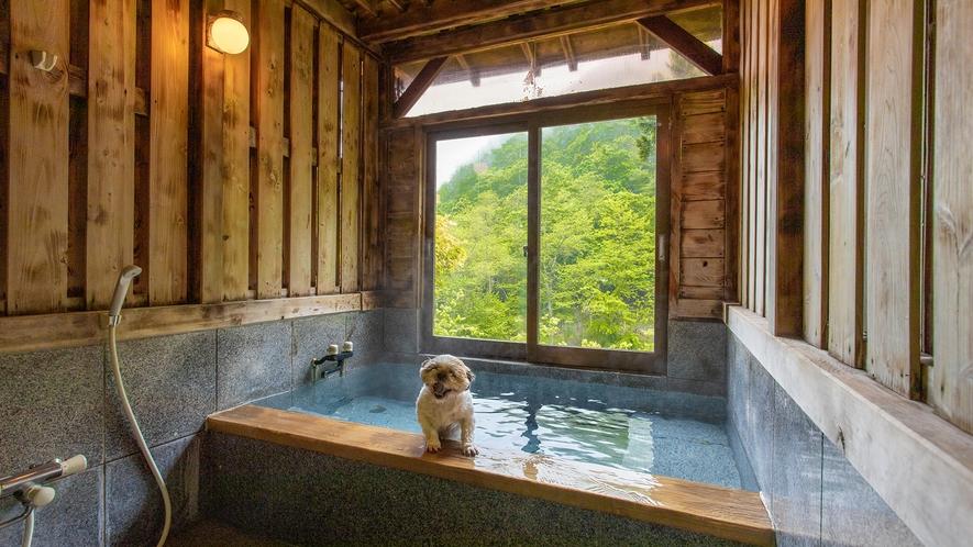 客室【杏】和室10畳+ベッドルーム+源泉かけ流し風呂+屋外ドッグラン