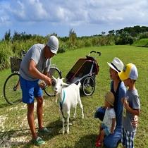 【アクティビティ】家族自転車