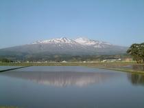 田植え前の鳥海山