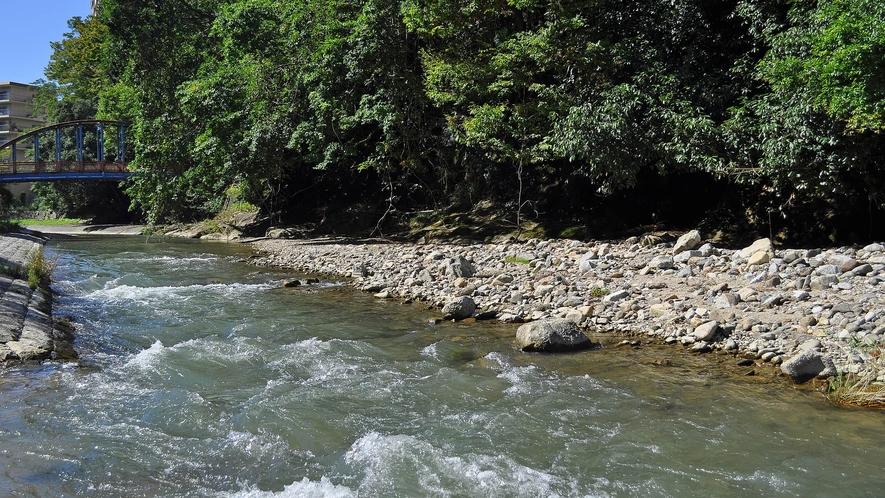 【周辺】当館の裏を流れる石川