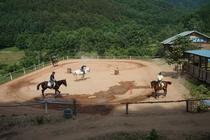 ミノワ乗馬クラブの馬場