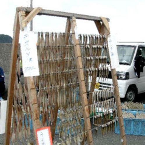 【5月に開催される*わかめ祭*】わかめだけではなく、他の海産物の販売もございます♪