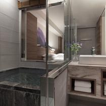 温泉付プレミアルームバスルーム