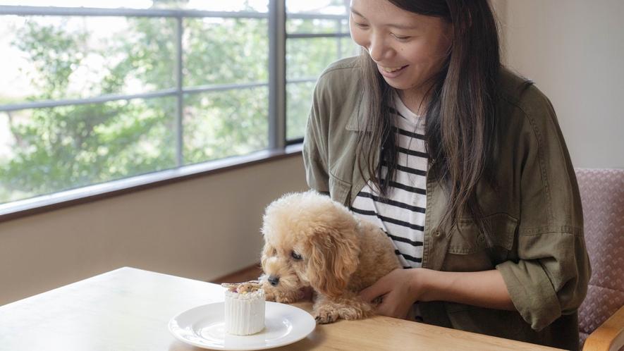 with DOGステイイメージ