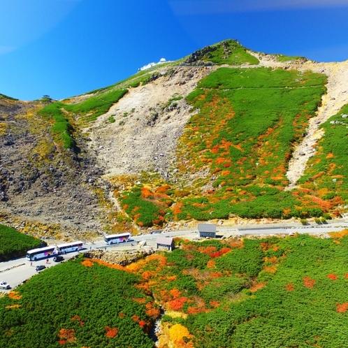 乗鞍岳山上へむかう「乗鞍エコーライン」秋の紅葉は一度は見てみたい圧巻の光景です!