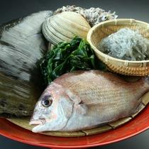 料理篠島の新鮮素材