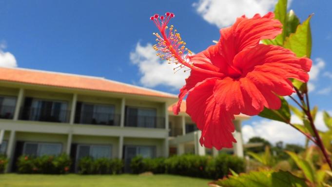【楽天トラベルセール】夏休みは島のエネルギーを感じてゆったり過ごす♪ご家族/カップル旅★(朝食付き)
