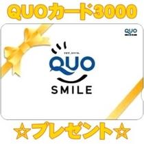 クオカード3000付