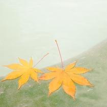 *女湯露天/美しい白みがかった緑色が特徴の硫黄泉です