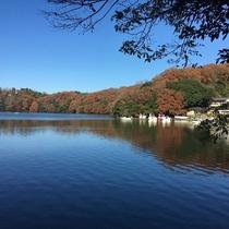 [紅葉]秋の一碧湖