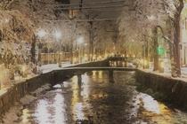 友鶴を出てすぐ、白川の夜の風景
