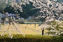 多々良木芸術の森美術館【撮影:吉田利栄】