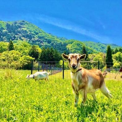 【農業体験プラン】農家民宿で山羊のエサやり♪グリーンツーリズムなど素泊まりプラン♪