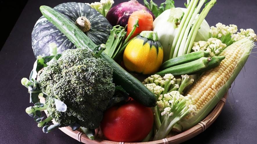 【会津産の旬野菜】採れたてでみずみずしい野菜本来の旨みをご堪能ください。