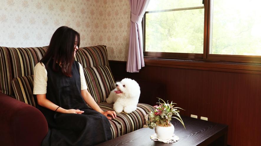 【客室一例】高級感のある客室。清潔さを保ってワンちゃんにも寛いでいただけるよう心がけています。