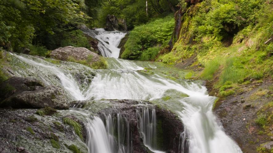 【周辺】おしどり隠しの滝。当館より車で15分