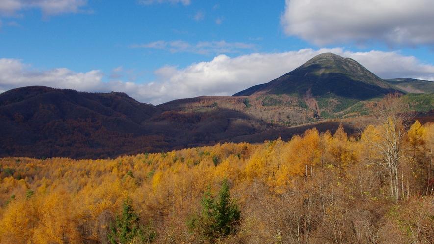 【周辺観光】秋の蓼科山
