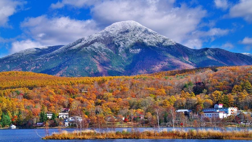 【周辺観光】秋の白樺湖