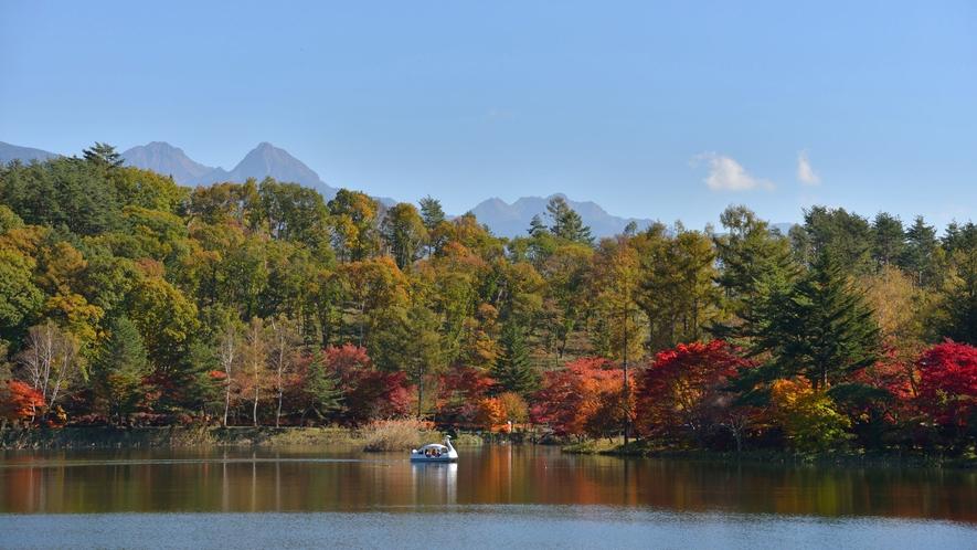 【周辺観光】秋の蓼科湖