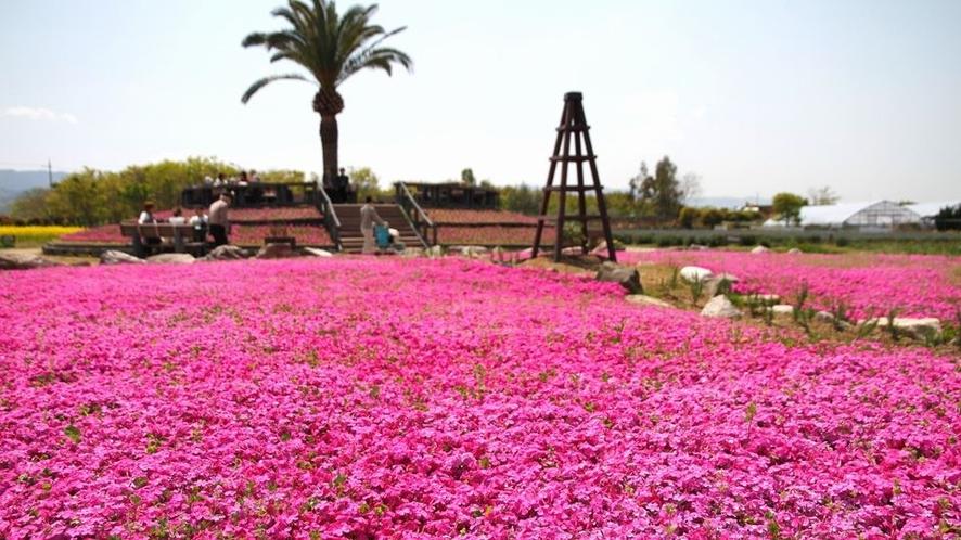 ◆和泉リサイクル環境公園(ホテルより車で約10分)