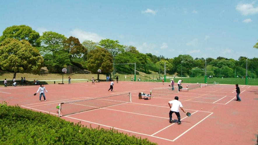 ◆パドルテニス