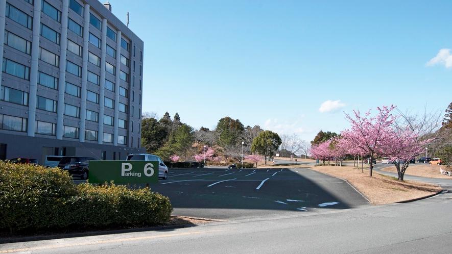 【ノースウィング】駐車場(春)