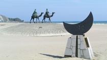 【月の沙漠記念像】童謡「月の沙漠」に登場する王子と姫の銅像です。