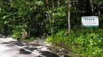 【遊歩道】ホテル敷地内から大東舘へのホテル専用遊歩道がございます